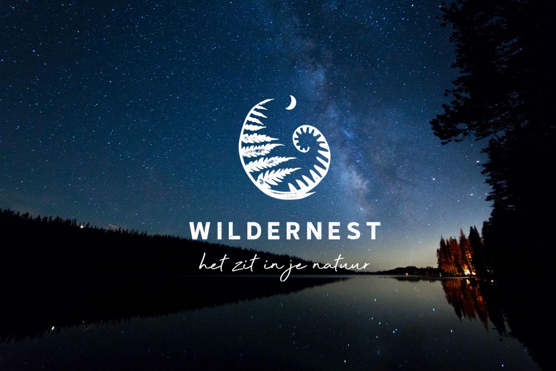 Website achtergrond home logo